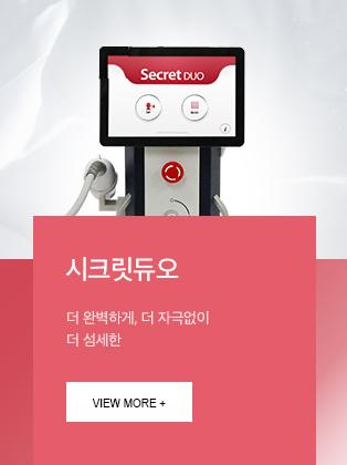 시크릿듀오 도입